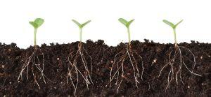 Back to the roots: Einfacher und effizienter?